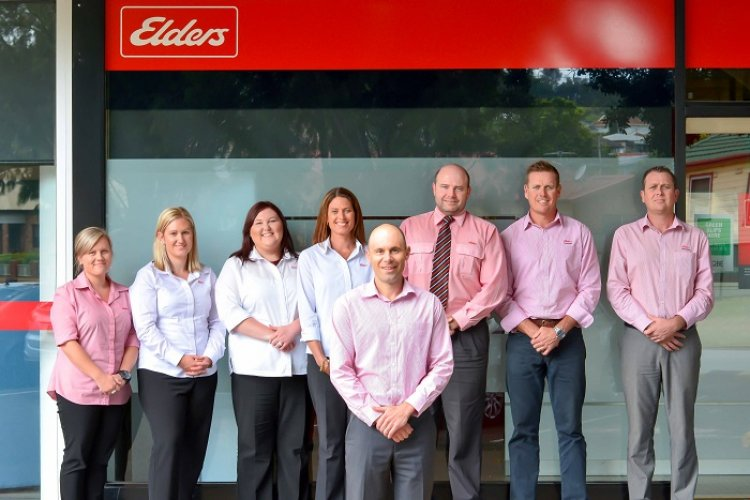Elders insurance team members at Elders Insurance Erina office