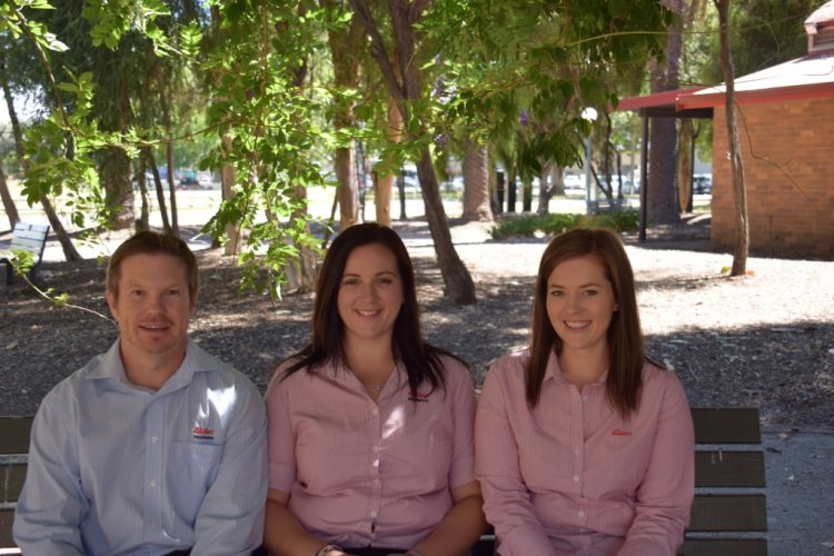 Elders insurance team members at Elders Insurance Gunnedah office